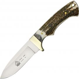 SGB Coyote Stag