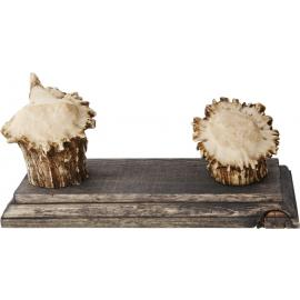 Small Antler Stand