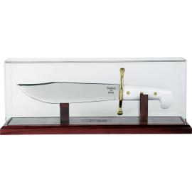 Magnetic Bowie Dome Display